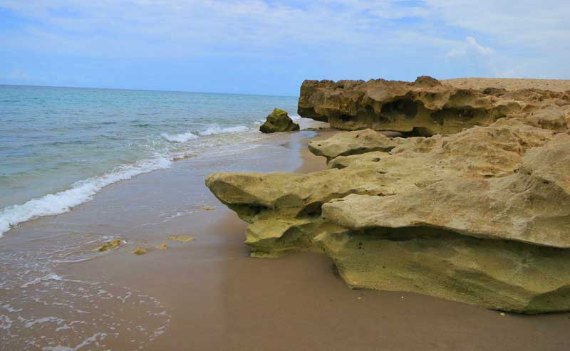 It's an unusual beach -- it's rocky! -- at Gilbert's Bar House of Refuge, Hutchinson Island.