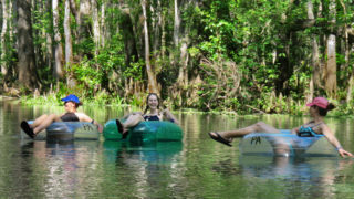 Tubing in Florida at Ichetucknee Springs