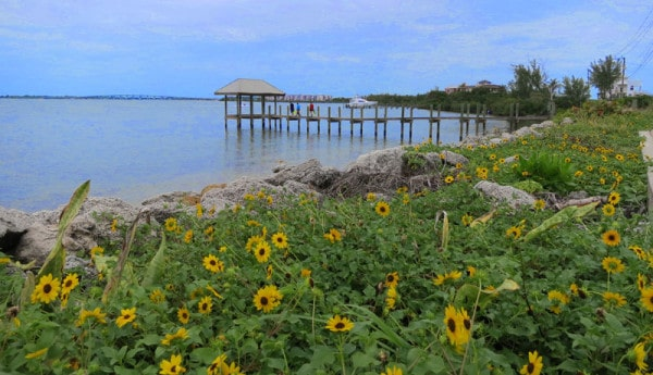 Scenic drives in Florida include one along the Indian River Lagoon. The House of Refuge on Hutchinson Island overlooks the ocean on one side and this view of the Indian River Lagoon in the other.