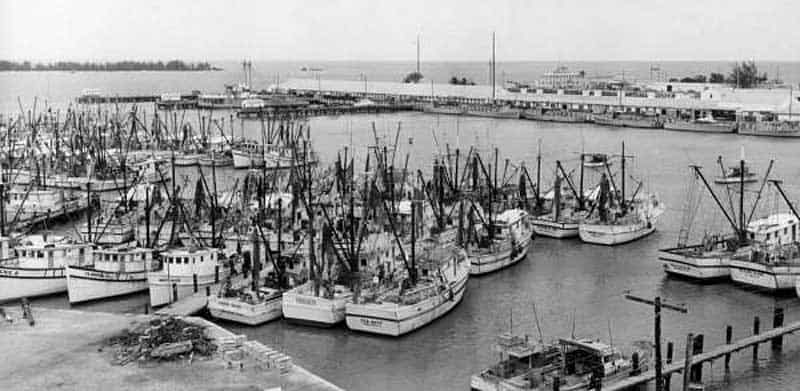 Shrimp boats in Key West Historic Seaport in the 1960s. (Photo: Florida Memory Project)