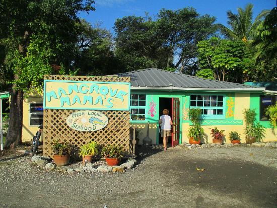 Mangrove Mama's florida keys road food