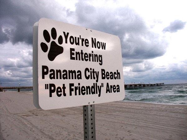 dog friendly beach Panama City