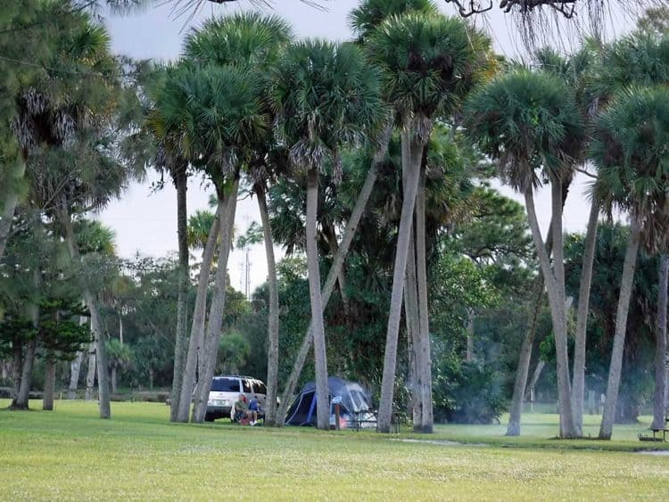phipps tent site Phipps Park Campground in Stuart ideally suited for family outings