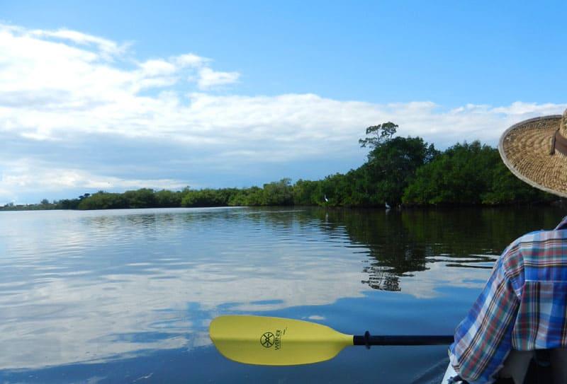 pine island sound Kayak Sanibel, Captiva: Where to go to enjoy wildlife & beauty