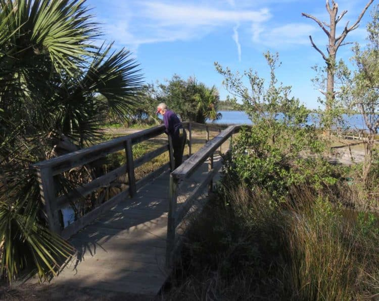 Princess Place Preserve: There are miles of trails here. (Photo: Bonnie Gross)