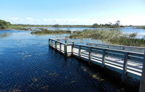 savannas state park scenic drive along the Indian River Lagoon