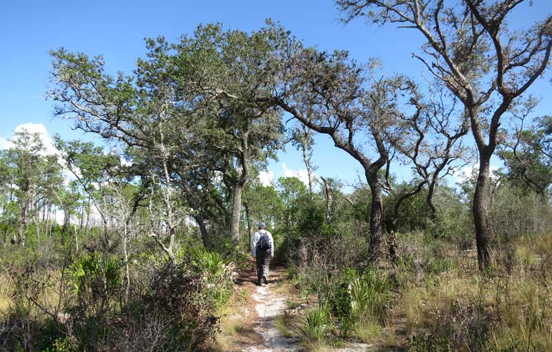 Tiger Creek Preserve Trail