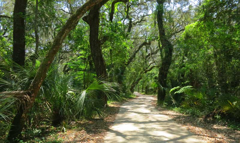 The Timucuan Ecological and Historic Preserve has roads and trails that pass through an Old Florida landscape.. (Photo: Bonnie Gross)