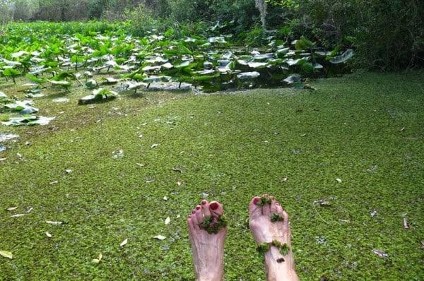 Tired feet take a dip in Patrick Creek at Tiger Creek Preserve. (Photo: David Blasco)