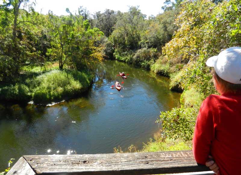 Turkey Creek in Palm Bay at Turkey Creek Sanctuary