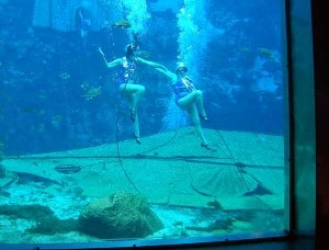 Mermaid show at Weeki Wachee Springs State Park in Florida