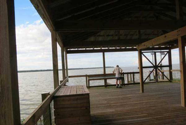A pavilion overlooking Lake Apopka in the Oakland Nature Preserve along the West Orange Trail