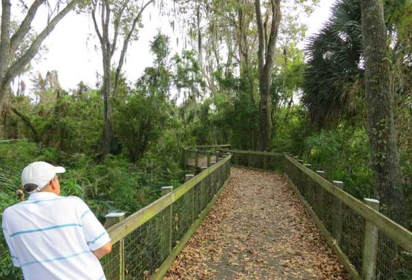 At Oakland Nature Preserve, a boardwalk leads to Lake Apopka. It's a good chance to stretch your legs while biking the West Orange Trail.